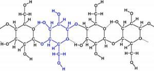 http://www.chemistry.wustl.edu/~edudev/LabTutorials/Dialysis/images/Cellulose.jpg