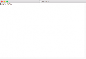 file.txt | Simple file.